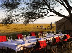 Kenia Nationalparks Safari - 7 Tage  Rundreise