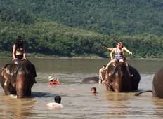 Luang Prabang 4 Days 3 Nights in Laos with Elephant Experience  Tour