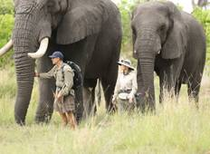 9 Day Tanzania Romantic Fly-In Manyara Tour