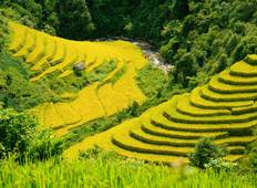 Best of Vietnam from Mountains to the Seas - 17 Days Tour Tour