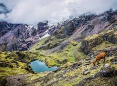 Ultimate Lares Trek + One Day Inca Trail 5 Days - Small Group Tour