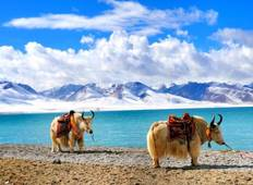 6 Days Lhasa and Namtso Lake Group Tour Tour