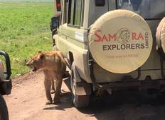 4 DAYS TANZANIA CAMPING SAFARI Tour