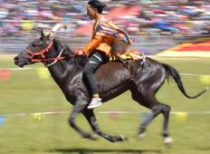 4 Days Naadam Festival Tour, July 10 to 13 Tour