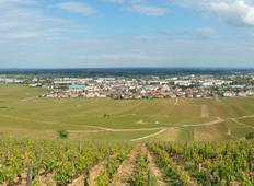 Beaune Vineyards Self-Guided Walk Tour