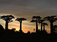 13 Days South Tours Madagascar Tour