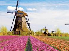 Windmills, Tulips & Belgian Delights with London and Bruges Tour