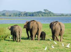 Private Incredible India Tour With Sri Lanka - 13 Days Tour
