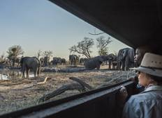 10-Day-The Elephant Trail Experience in Botswana  Tour