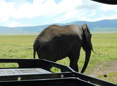 3Day Tanzania Classic Safari Tour