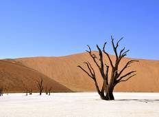 5 Days / 4 Nights Namibian Adventure (Budget) Tour