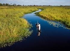 4-Day Okavango Delta & Boteti River Tented Safari Tour