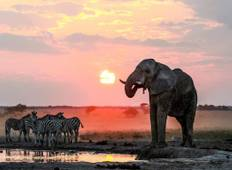 10 Days Amazing Kenya and Tanzania Luxury Safari Tour