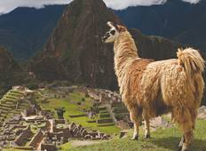 Peru With Machu Picchu (Base, Summer, 10 Days) Tour