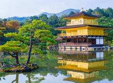Private Tours Discover Japan | 8 Days Fully Escorted   Tour