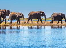 Cape Town to Chobe Adventure (2021) Tour