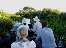4 Days North Pantanal - Unearthing exotic treasures in the Pantanal wetlands - New*** Tour