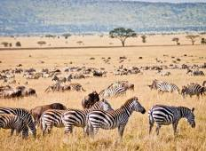 Ultimate African Overlander (from Nairobi to Cape Town) Tour