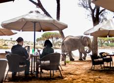 Luxus Flugsafari in Samburu (mit 5* Elephant Bedroom Camp) - 3 Tage Rundreise