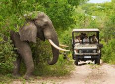 10-Days: Victoria Falls, Chobe and Okavango Delta Safari Tour from South Africa. Tour