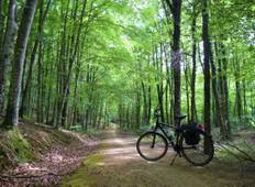 Discover the greenways of the north: Basque Country & Navarre Tour