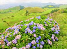 The Colours of the Azores Islands Tour