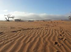 3 Day Sossusvlei starting in Swakopmund Tour