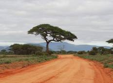 Private Tsavo Safari ab Mombasa - 3 Tage Rundreise
