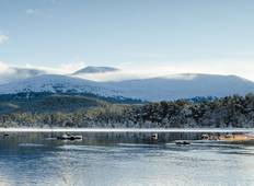Walk the Cairngorms in Winter (5 Days) Tour