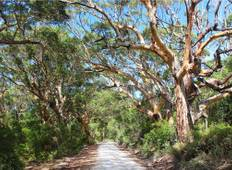 Margaret River & Albany Adventure Tour