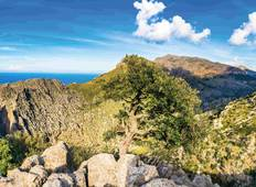 Mallorca: Hiking & enjoyment in the North Tour