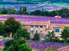 Provence: Highlights Tour
