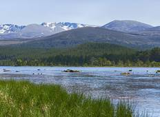 Walk the Cairngorms in Summer Tour