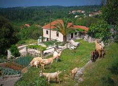 Discover simple rural life and traditional Mediterranean cuisine in Croatia Tour