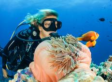 Maldives Marine-life Adventure Tour