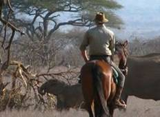 Kenya: Laikipia Mount Kenya 11 Day Riding Safari Tour