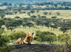 21 Day East African Explorer Tour