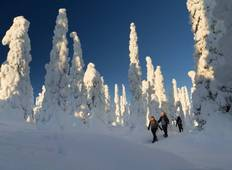 Snowshoeing in Finland Tour