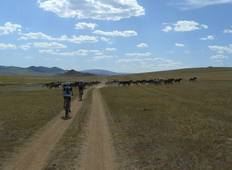 Cycling in Mongolia Tour