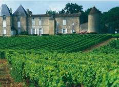 Medoc Vineyard Cycle Tour