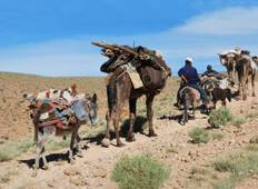 Migration of the Berbers - 11 days Tour