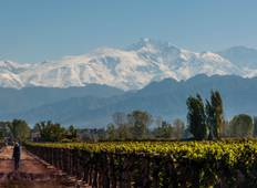 Mendoza Wine Tour 3 Days Tour