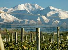 Mendoza: Best Wines in the Andes Tour