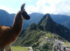 Lima To La Paz (30 Days) Peru & Bolivia Encompassed Tour