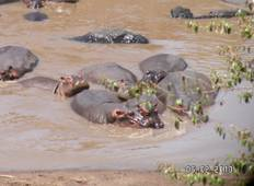 4 Days best of Kenya Rift-valley Safari Tour