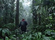 Wildlife Expedition in Costa Rica Tour