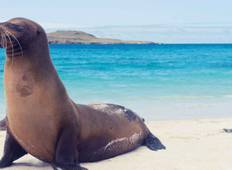 Galapagos Express Tour