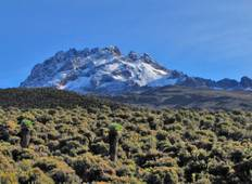 Kilimanjaro Climb Rongai Route (6 Days) Tour