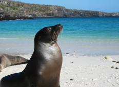 Active Galapagos Tour
