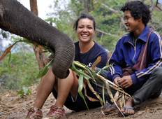 Conservation of Elephants in Huay Pakoot, Thailand (7n+) Tour
